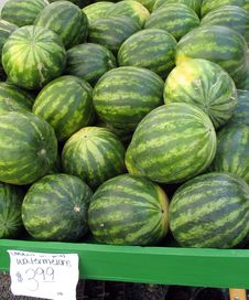 Free Lots Of Watermelons, $3.99 Stock Photos - 4933993