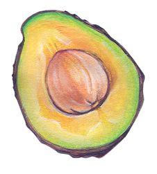 Free Avocado Royalty Free Stock Photography - 4934347