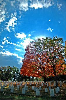 Free Arlington Cemetery Stock Photo - 4935300