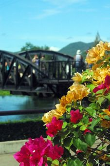 Free Bridge Over The River Kwai Royalty Free Stock Image - 4935396