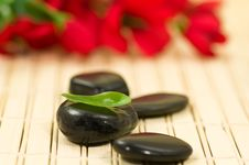 Free Therapy Stones Royalty Free Stock Photo - 4938445