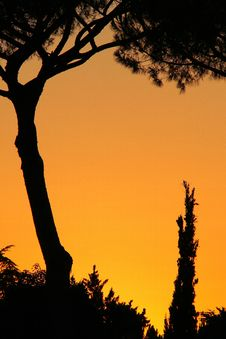 Free Color Of Sunset Stock Photos - 4938613