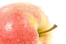 Free Fresh Apple Stock Photo - 4938660