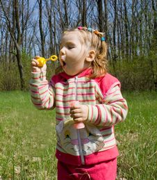 Free Blowing Bubbles Stock Photography - 4939162