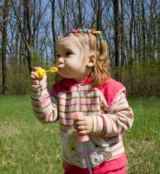 Free Blowing Bubbles Stock Images - 4939174