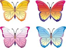 Free Butterfly Set Royalty Free Stock Image - 4939576