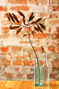 Free Glass Bottles With Dry Twig Royalty Free Stock Photo - 4947345