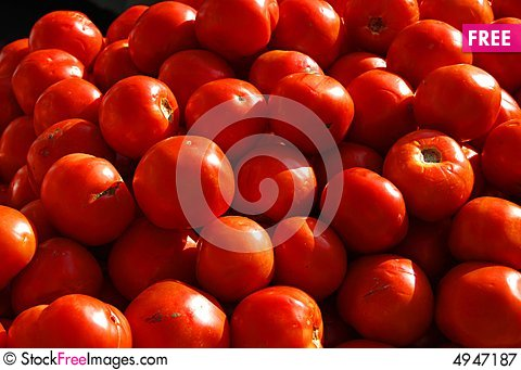 Free Fresh Heirloom Tomatoes Royalty Free Stock Photography - 4947187