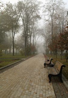 Autumn Morning In Park Stock Photography