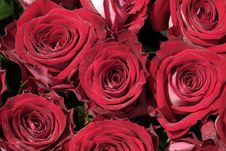 Free Bouquet Of Roses Stock Photography - 4944822