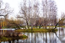 Free Island In Lake Stock Photo - 4945810