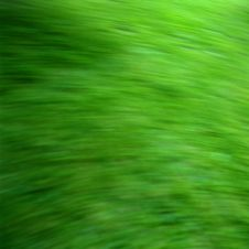Free Green Grass With Motion Blur Royalty Free Stock Photos - 4945828