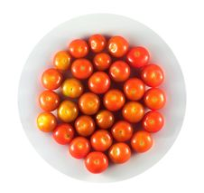 Free Red Tomatoes Stock Photos - 4946113