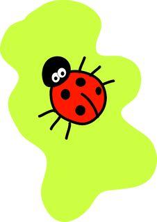 Free Ladybird Stock Photo - 4948540