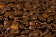Free Coffee Royalty Free Stock Photo - 4949355