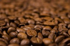 Free Coffee Royalty Free Stock Image - 4949486