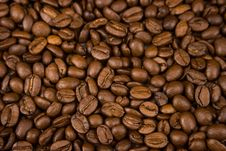 Free Coffee Beans Royalty Free Stock Image - 4949506