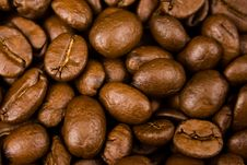 Free Coffee Royalty Free Stock Photo - 4949515