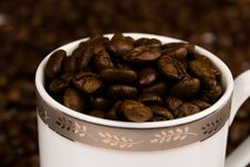 Free Cup Of Coffee Beans Stock Photo - 4949810