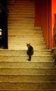 Free Curious Cat Stock Photography - 49415522