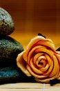 Free Still Life Royalty Free Stock Photos - 4959368