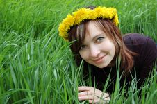 Free Spring Mood Royalty Free Stock Photography - 4950347