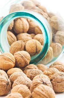 Free Walnuts Royalty Free Stock Photos - 4950998