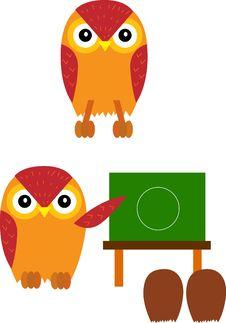 Free Owl Stock Photo - 4953710