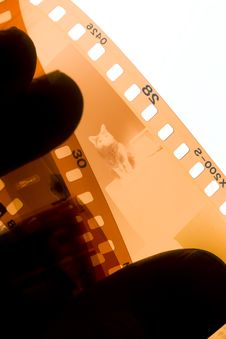 Free 35 Mm Film Strip Stock Photo - 4955370