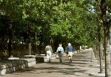 Free Women Walking Stock Images - 4959234