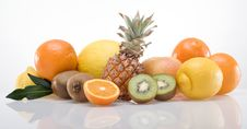 Band Of Fruits_04 Royalty Free Stock Photography