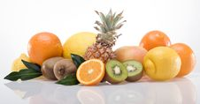 Band Of Fruits_05 Stock Photography