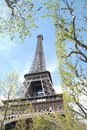 Free Eiffel Tower In April Stock Images - 4960444