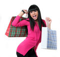 Free Portrait Of Young Beautifull Woman With Bags Stock Image - 4963901