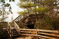 Free Stair Steps In Nature Forest Stock Photos - 4964873