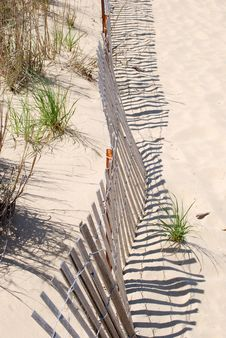 Free Protected Dunes Royalty Free Stock Image - 4961816