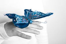 Free Blue Butterfly In Woman Hand Royalty Free Stock Photo - 4962595
