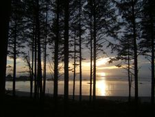 Free Sunset Behind Trees Stock Image - 4962851