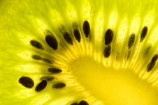 Free Sliced Kiwi. Royalty Free Stock Images - 4963089