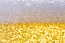 Free Background From Fresh Foamy Beer. Stock Image - 4963231