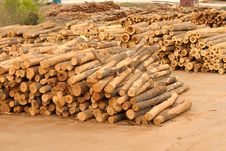 Free Lumberyard With Stacks Of Logs Stock Images - 4965224