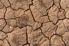 Soil Texture Royalty Free Stock Image