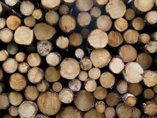 Stack Of Logs - Texture Stock Photos