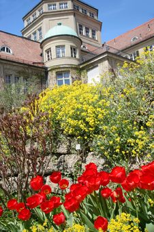Botanischer Garten Royalty Free Stock Photos