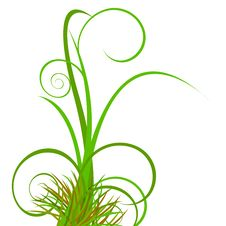 Free Floral Background With Green Grass Stock Image - 4967661