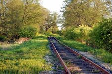 Free Railway In Woods Stock Photo - 4967960
