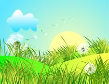 Free Spring Landscape With Green Grass And Blue Sky Royalty Free Stock Photography - 4968117