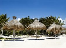 Free Tropical Beach Royalty Free Stock Photo - 4969975