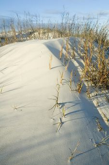 Free Sand Dune Stock Images - 4970614