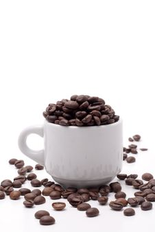 Free Cofee Seed Royalty Free Stock Images - 4971189